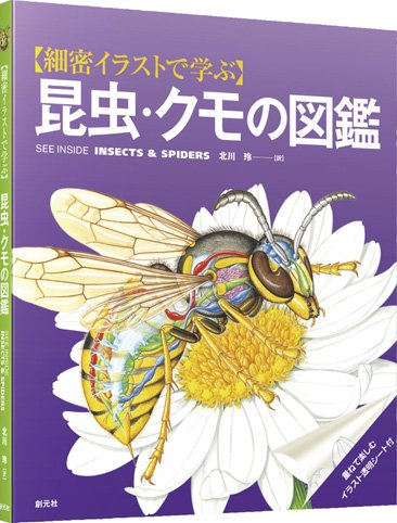 細密イラストで学ぶ 昆虫・クモの図鑑