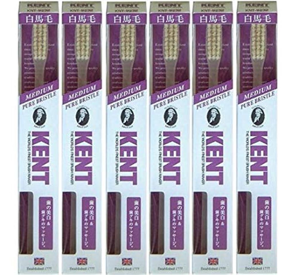 小売原始的な杖【6本セット】KENT 白馬毛歯ブラシ KNT-9232 ラージヘッド ふつう