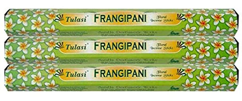 Tulasi フランジパニ 3個セット