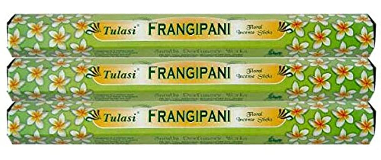 不当十分に周囲Tulasi フランジパニ 3個セット