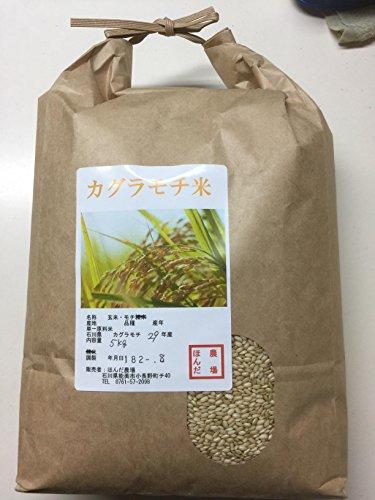 カグラもち (玄米 5kg)