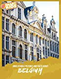 Unbelievable Pictures and Facts About Belgium (English Edition) 画像