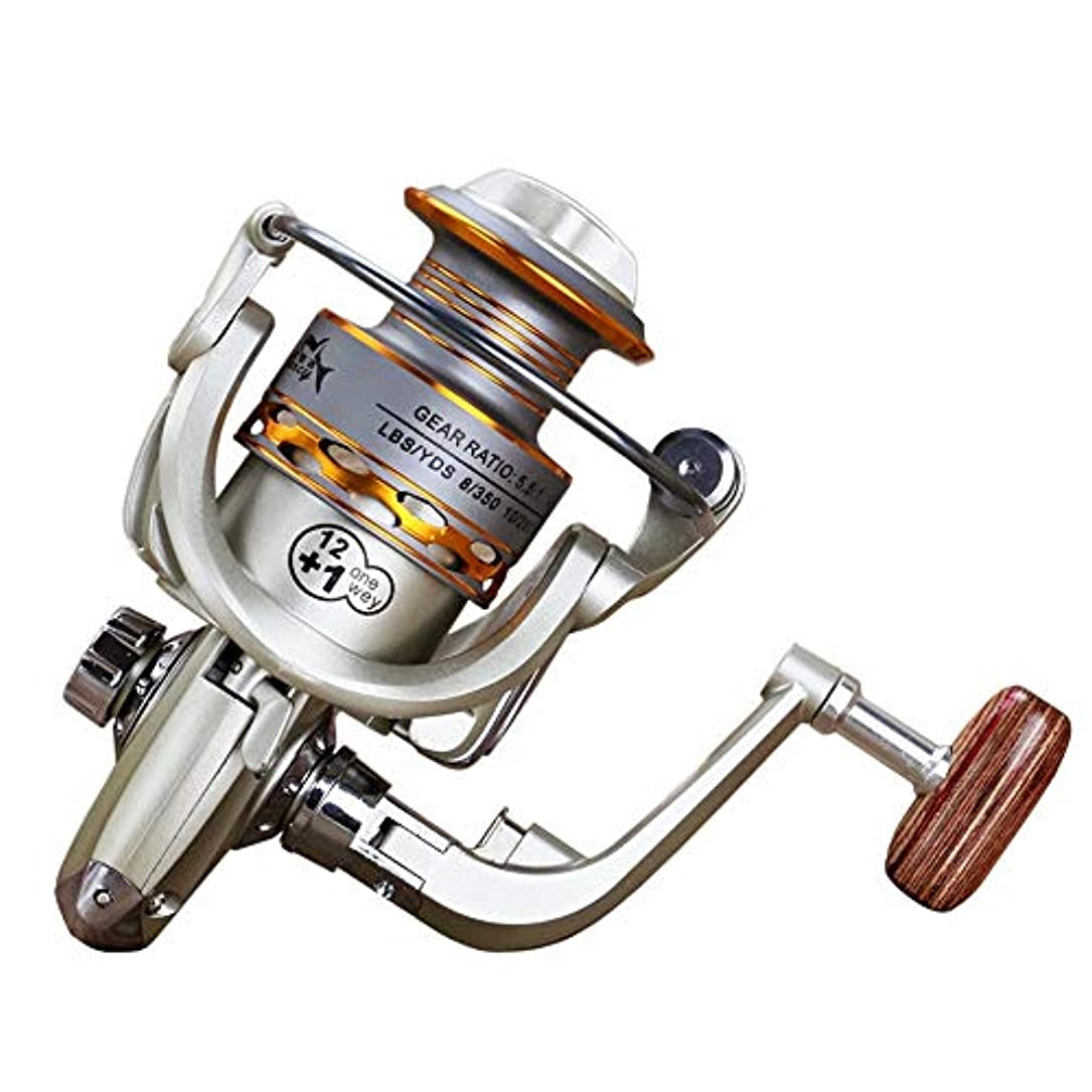 地域熱意インデックス釣り用リール ギャップリールなし13軸メタルヘッドリール釣り用リール金属製のハンドル釣りギア スピニングリール (Color : PHOTO COLOR, Size : 1000)
