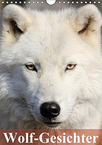 Wolf-Gesichter (Wandkalender 2017 DIN A4 hoch): Woelfe sind zum heulen schoen! (Monatskalender, 14 Seiten )