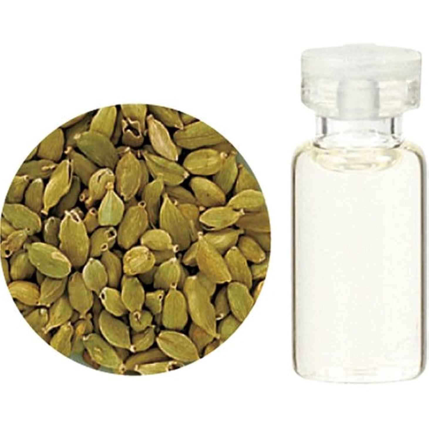球体情熱的周術期Herbal Life カルダモン10ml