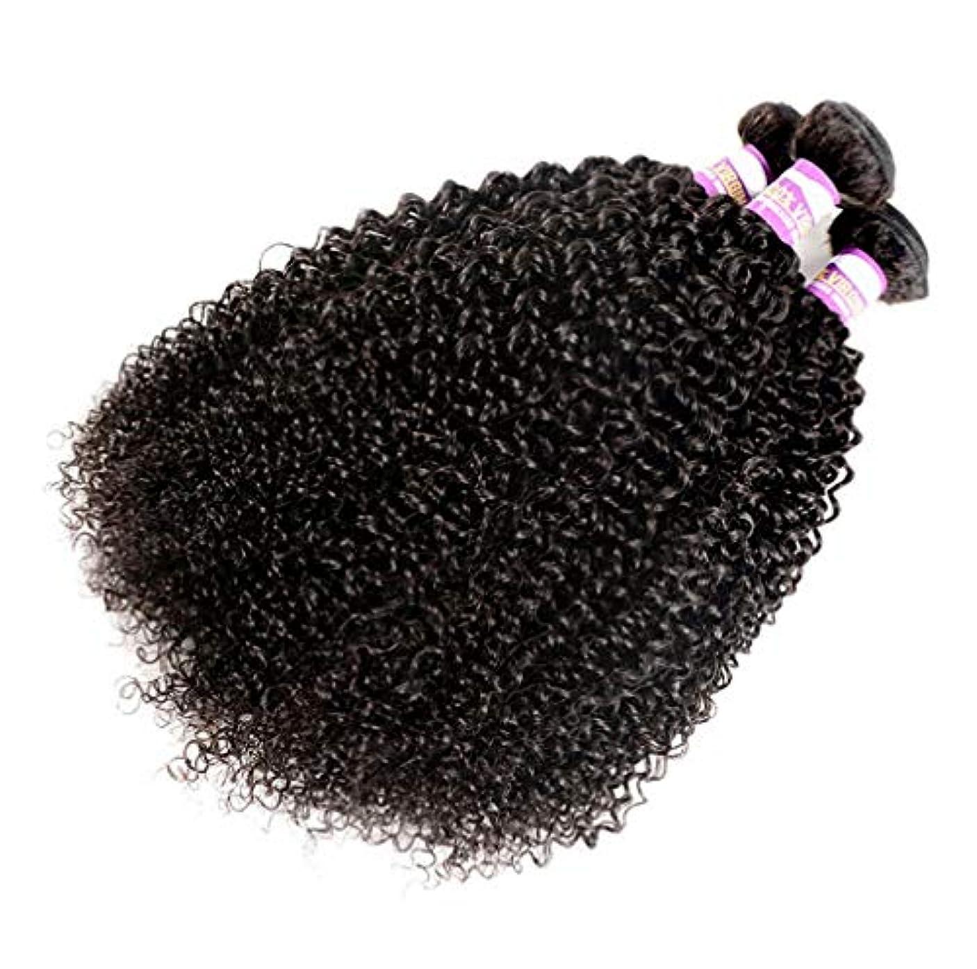 サーマル乳剤アノイ女性の深い波ブラジルの人間の髪織りカーリーバージン髪横糸未処理ブラジル毛延長自然色(3バンドル)