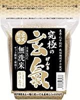 無農薬の巨大胚芽の発芽玄米 究極の玄氣 1.5㎏(真空パック)