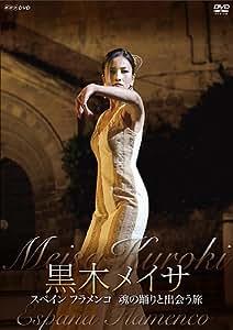 黒木メイサ スペイン フラメンコ 魂の踊りと出会う旅 [DVD]