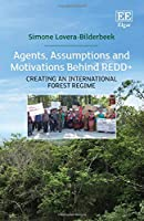Agents, Assumptions and Motivations Behind REDD+: Creating an International Forest Regime