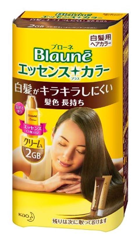 テストスープ飾り羽ブローネエッセンスプラスカラー 2GB より明るいエレガントブラウン