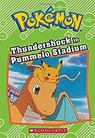 Thundershock in Pummelo Stadium (Pokemo)
