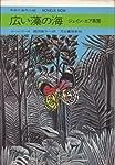 広い藻の海―ジェイン・エア異聞 (1973年) (今日の海外小説)