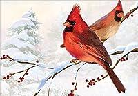 2つCardinals–Designer Greetingsボックス18のクリスマスカード