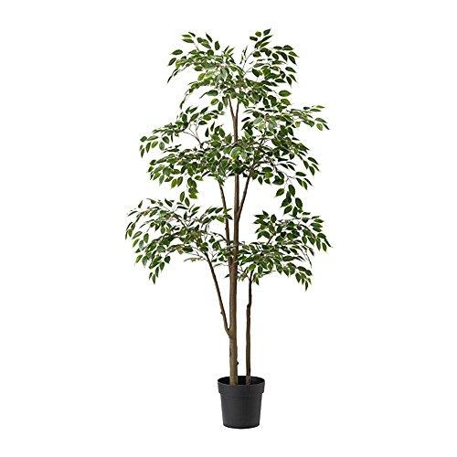 IKEA(イケア)人工観葉植物 ベンジャミン