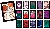殺戮の天使 アートワークコレクション (BOX)