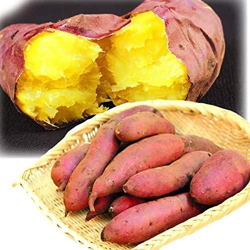 さつまいも 紅はるか 5kg 熊本産 訳あり ご家庭用 徳用 べにはるか さつま芋 蜜芋 国華園