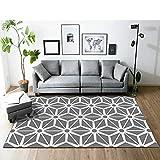 熟女 マット畳 ささくれ カーペット 140*200cm シンプルモダンな幾何学的な格子敷物リビングルームのコーヒーテーブルの寝室のベッドサイドホームスタディ北欧スタイルのエントリーマット長正方形シンプル01シンプル02シンプル03シンプル04シンプル05シンプル06シンプル07シンプル08シンプル09シンプル10シンプル11シンプル12シンプル13シンプル14シンプル15シンプル16サイズシンプル01シンプル02シンプル03シンプル04シンプル05シンプル06シンプル07シンプル08シンプル09シンプル10シンプル11シンプル12シンプル13シンプル14シンプル15シンプル16サイズ