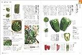 からだにおいしい 野菜の便利帳 (便利帳シリーズ) 画像