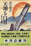 天翔る白日―小説 大津皇子 (中公文庫)