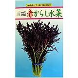 高菜・からし菜 種 赤からし水菜 小袋(約5ml)