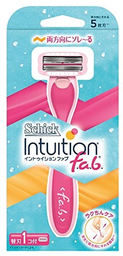 革新出くわすフルーツシック Schick イントゥイション ファブ ホルダー お試し用 替刃1コ付 (替刃は本体に装着済み) 女性 カミソリ