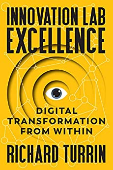 Innovation Lab Excellence: Digital Transformation from Within by [Turrin, Richard]