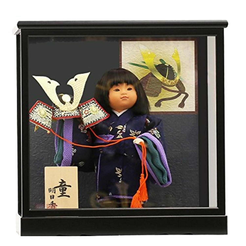人形工房天祥 五月人形 童人形 ケース飾り 6号 大将 横幅31×奥行25×高さ33 cm 14ao-6taisho