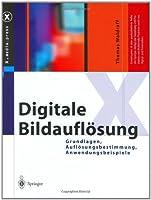 Digitale Bildauflosung: Grundlagen, Auflosungsbestimmung, Anwendungsbeispiele (X.Media.Press)