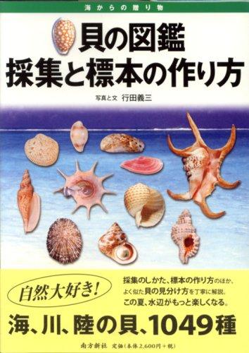 貝の図鑑—採集と標本の作り方