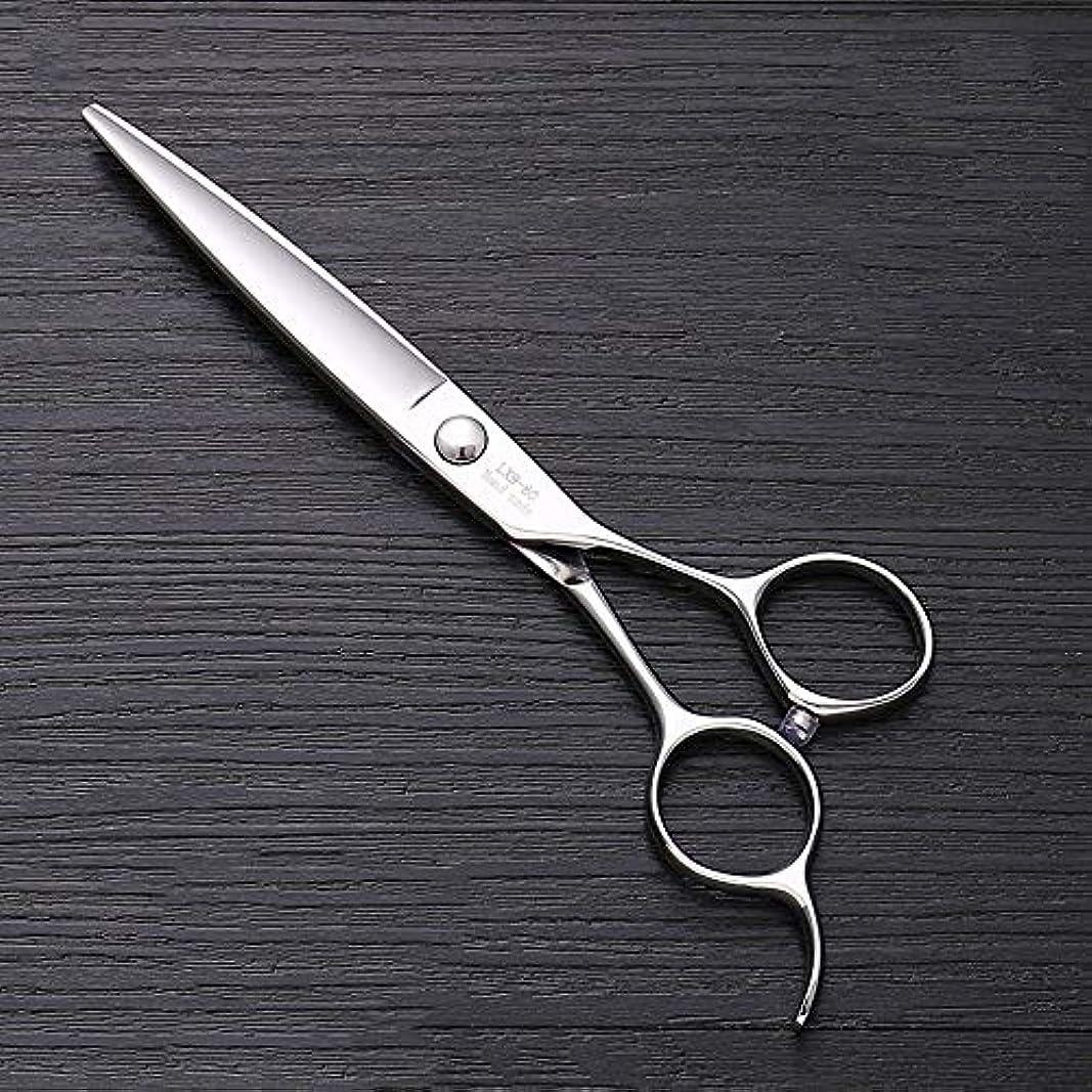 ダイアクリティカルさわやかプライバシー6インチ440 Cステンレス鋼はさみ理髪はさみ、ハイエンドファッション理髪はさみ ヘアケア (色 : Silver)