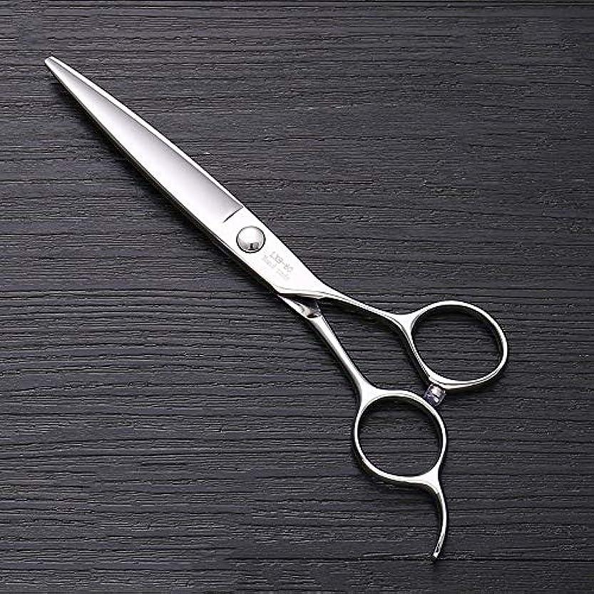 推測カウンターパートながら6インチ440 Cステンレス鋼はさみ理髪はさみ、ハイエンドファッション理髪はさみ ヘアケア (色 : Silver)
