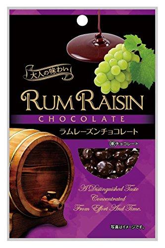 共立食品 ラムレーズンチョコレート 55g×10袋