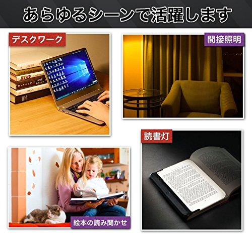 【Eagle】 アップル LEDデスクライト タッチセンサー式 調光 デスクスタンド USB充電 コードレス (日本語説明書 & USBアダプター付き) Eagle