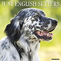 Just English Setters 2020 Calendar