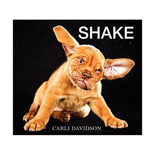Shakeの商品画像