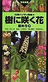 樹に咲く花―離弁花〈2〉 (山渓ハンディ図鑑)