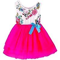 2Bunnies Girl Baby Girls Floral Flower Girl Dress Tulle Tutu Birthday Party Sundress