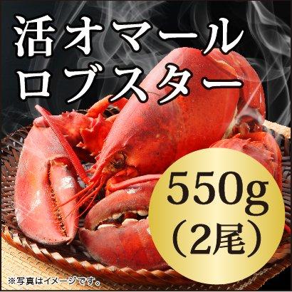 活 オマール ロブスター(550gx2尾)