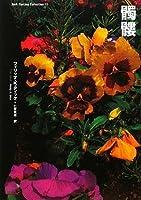 髑髏 (ダーク・ファンタジー・コレクション)