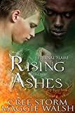 Rising From The Ashes (Eternal Flames Book 2) (English Edition)