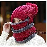luckyshd冬防風キャップ暖かい面カバー調整可能スキー帽子3 - in - 1キャップ Size:Neck scarf:26*19cm/10.2*7.5inch Winter-0049