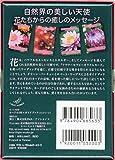フラワーセラピーオラクルカード日本語版説明書付 (オラクルカードシリーズ) 画像