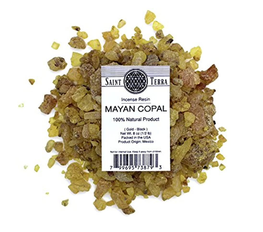 王女テント義務付けられたSaint Terra – マヤCopal樹脂Incense gold-black 8 oz ( 1 / 2lb ) – 100 % Natural