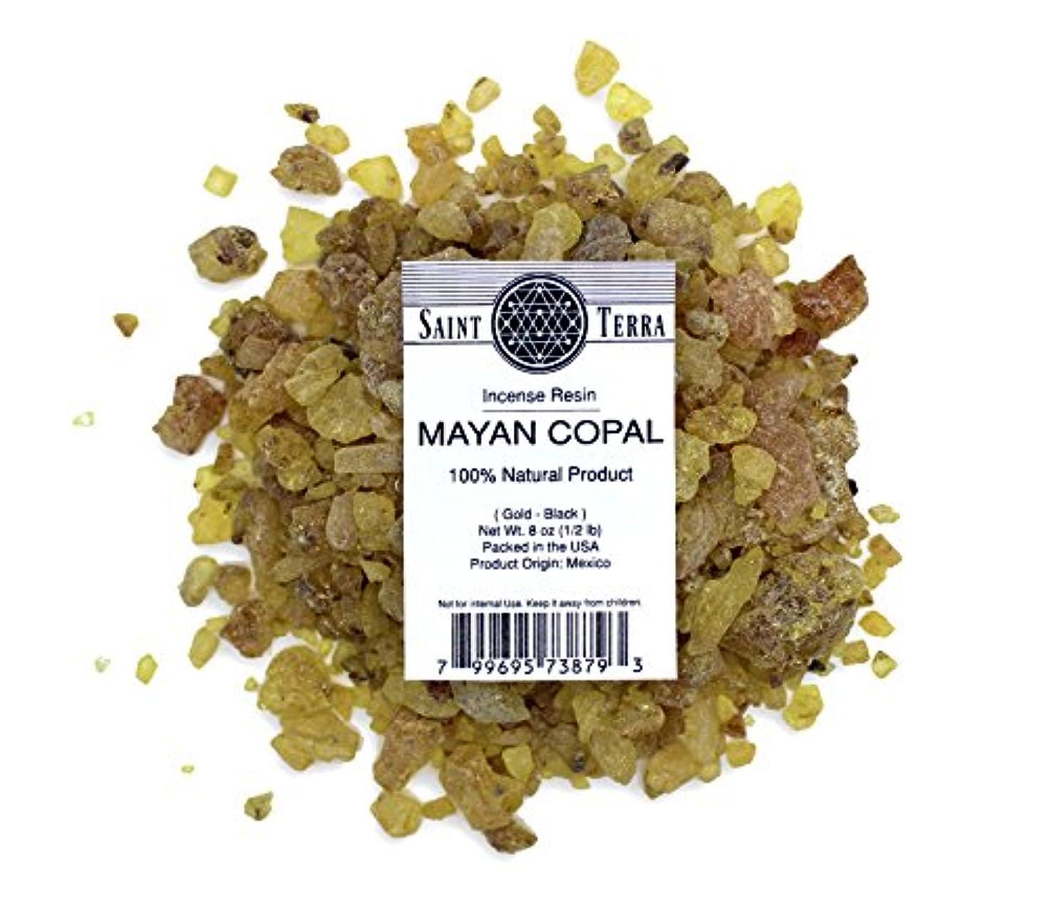 ファンタジー本体見積りSaint Terra – マヤCopal樹脂Incense gold-black 8 oz ( 1 / 2lb ) – 100 % Natural