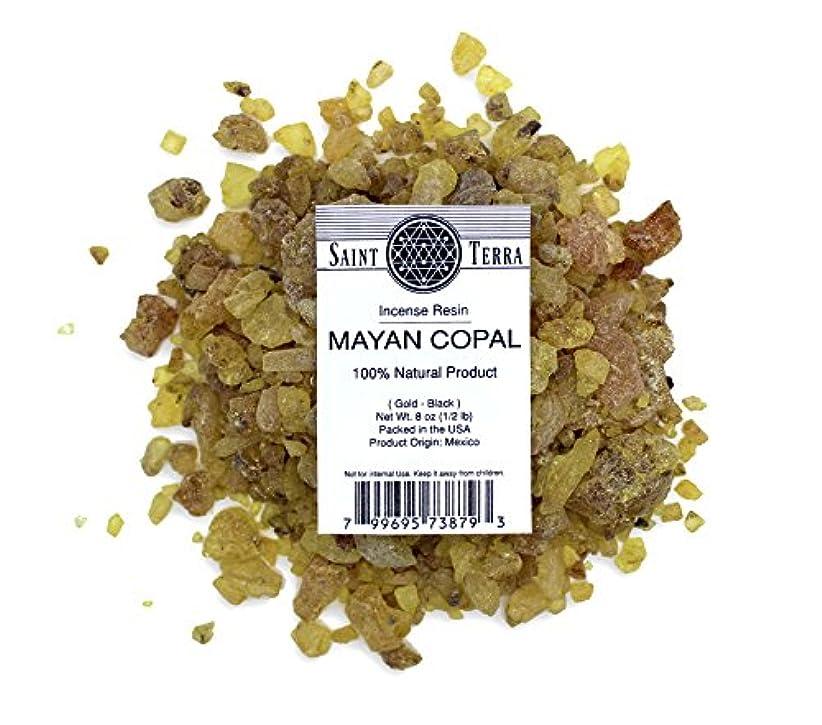 スラダム機械的渇きSaint Terra – マヤCopal樹脂Incense gold-black 8 oz ( 1 / 2lb ) – 100 % Natural