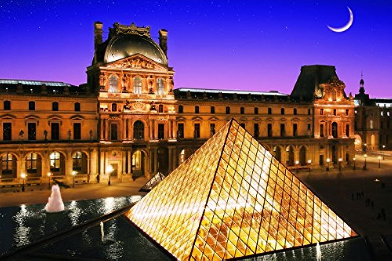 1000ピース ジグソーパズル めざせパズルの達人 パリのセーヌ河岸VII-ルーヴル美術館[フランス] (50x75cm)