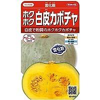 サカタのタネ 実咲野菜1002 ホクホク白皮カボチャ 雪化粧 00921002