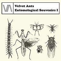 Entomological Souvenirs I [CAR-54]