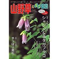 山野草とミニ盆栽 2006年 07月号 [雑誌]