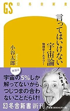 言ってはいけない宇宙論 物理学7大タブー (幻冬舎新書)